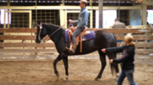 Just four miles from New Buffalo, this 28-acre horse farm offers riding lessons, horse shows, trail rides and more. Giddy up! We get a lesson from owner Shannon Barnes.