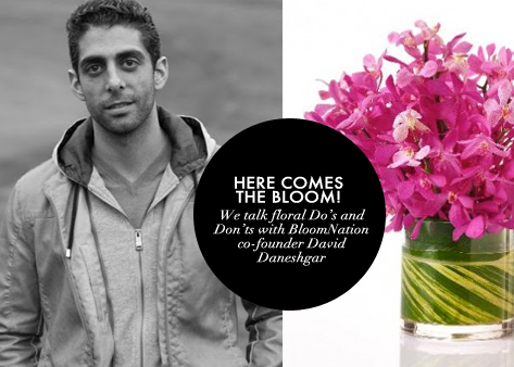 BloomNation David Daneshgr-Glossed-Found-Blog