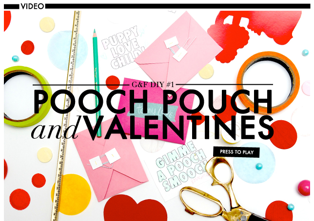 DIY VIDEO large_POOCH POUCH