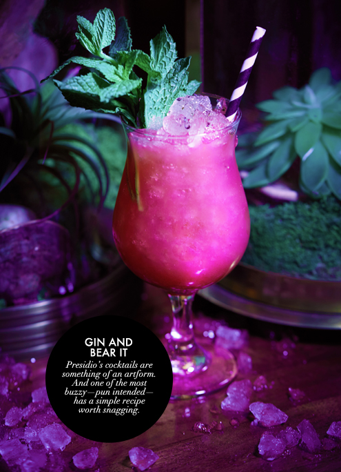 G&F BLOG_Presidio Gin Cocktail