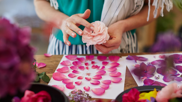 Flower Pressing with Christine Noelle